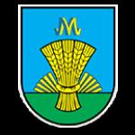 """Комунальне некомерційне підприємство """"Михайлівська багатопрофільна лікарня"""" Михайлівської районної ради Запорізької області -"""
