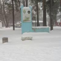 Весна в зимових шатах - 01.03.2018