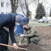 Мар'їнська громада долучилася до проекту Озеленення планети 10.04.2021