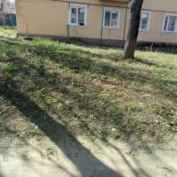 Суворова 15 (5)