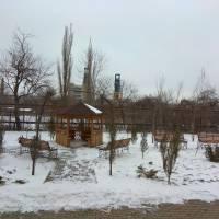 МАСЛЯНА в Парасковіївці