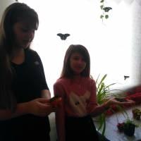 Виставка метеликів - ЗОШ 1 (2)