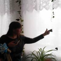 Виставка метеликів - ЗОШ 1 (8)