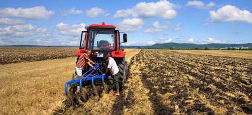 Безробітні Кіровоградщини можуть здобути актуальну професію аграрної галузі