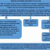 Коротке резюме реалізації Бізнес Проекту Карпати