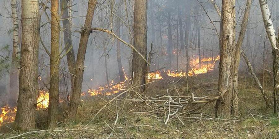 Пожежа у селі Руда Сілецька