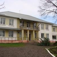 село Дмитровичі