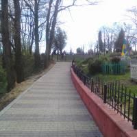 Спаська гора (дорога на цвинтар)