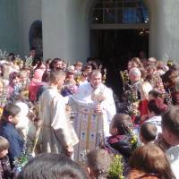 Вербна неділя 2017 (Церква Преображення Господнього)