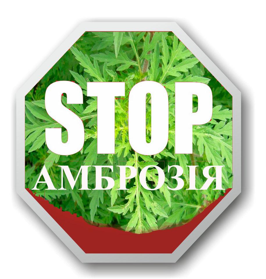 Стоп Амброзія