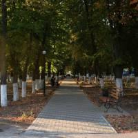 Алея у парку ім. А.Ільченка