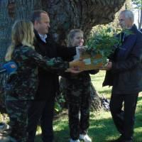 Викопані паростки дубів вручили представникам областей