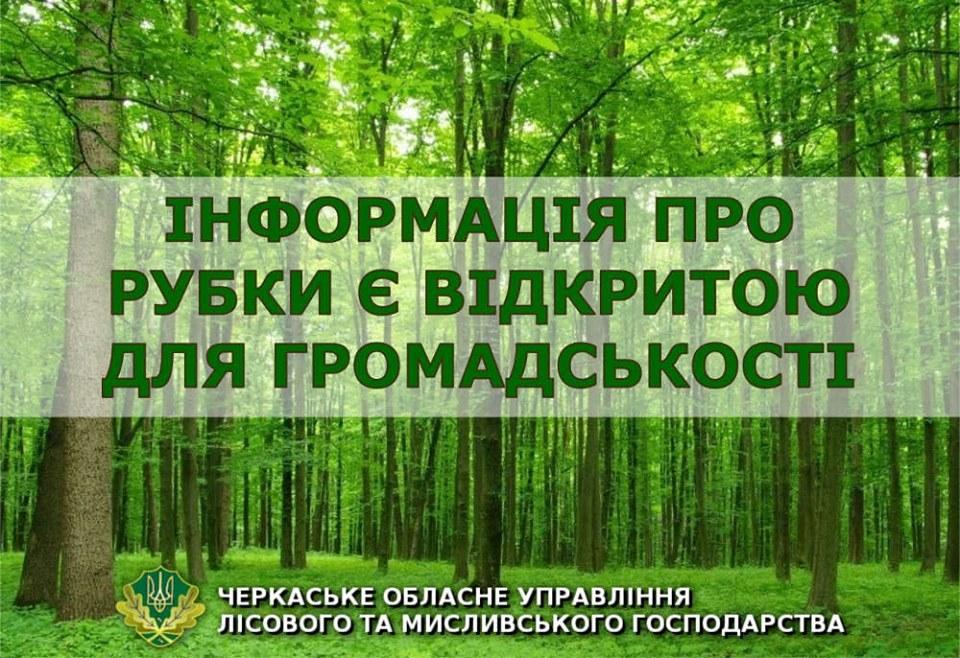 Лісівники Черкащини нагадують: інформація про рубки деревини є відкритою та доступною для громадськості