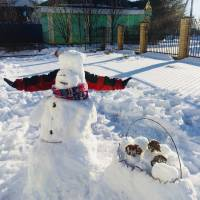 Гостинці від сніговика   (с. Родниківка )