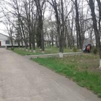 Заклади культури села Піківець