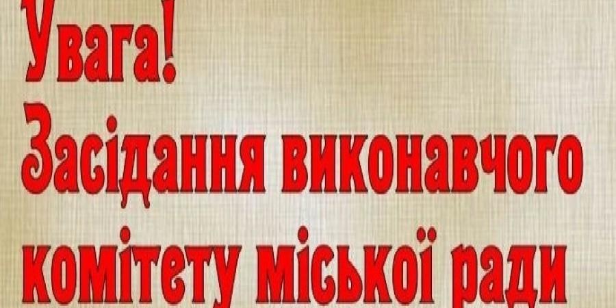 Про скликання чергового засідання виконавчого комітету Липовецької міської ради