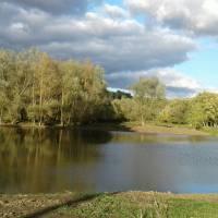 Річка Лозова вдихнула нове життя