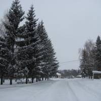 Зима в Саїнці