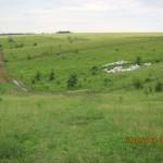 сільське сміттєзвалище