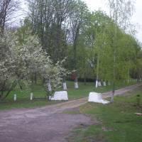 Парк біля сільської ради