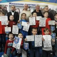Стрижавська школа бою «У-вей» святкує своє 20-ти річчя.