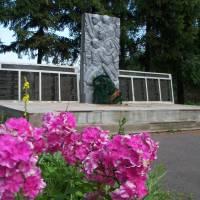 Пам'ятники на території Якушинецької сільської ради