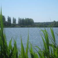 Тихі місця для рибалки