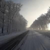 зима 004