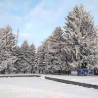 Зима в Локачах