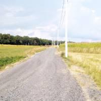 Поточний ремонт провулку Лісовий в селі Лище