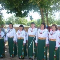 День села Старовойтове 3