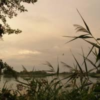 Павлівське озеро