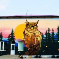Фото на обкладинку. Мурал на стіні Забродівської школи