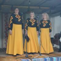 День села Ліски