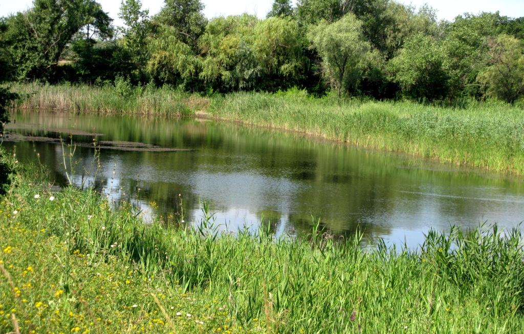 Озеро Біловід