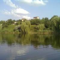 Новомиколаївка