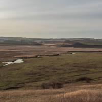 Краєвиди села Новоторецьке
