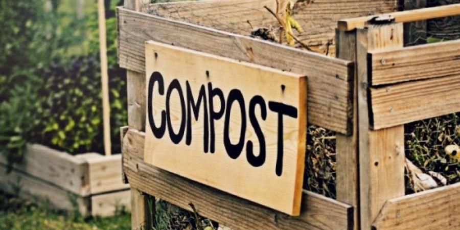 В Білокоровицькій громаді реалізовується екологічний проект «Компост і біогумус  в домашніх умовах».