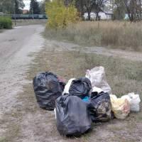 День прибирання (Іршанський старостинський округ)
