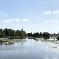 Місцевість села Галіївка