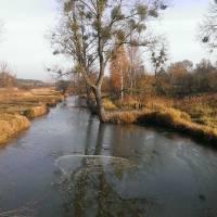 Річка Вітка