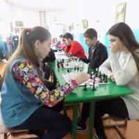 Троковицький ліцей - регіональні змагання з шахів  (лютий 2019 р.)
