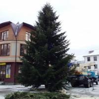 Ялинка - 2019 встановлена в центрі селища