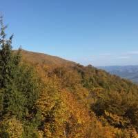 Боржава восени 1