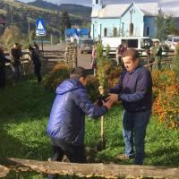 Посадка дерев в селі Богдан