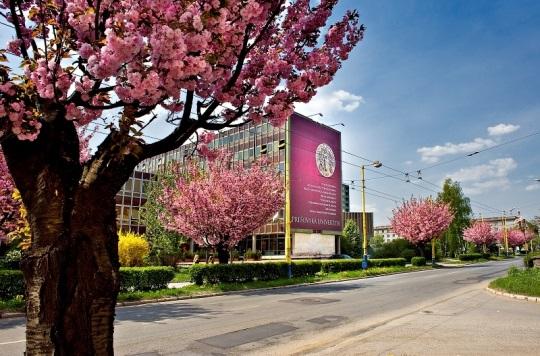 Учні шкіл Полянської територіальної громади мають можливість навчатись в Пряшівському університеті