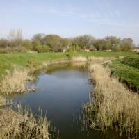 Річка Кільтиччя