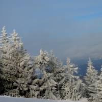 «Зимова казка чи повір'я?  Карпатське дивне надвечір'я.» Фото пейзаж