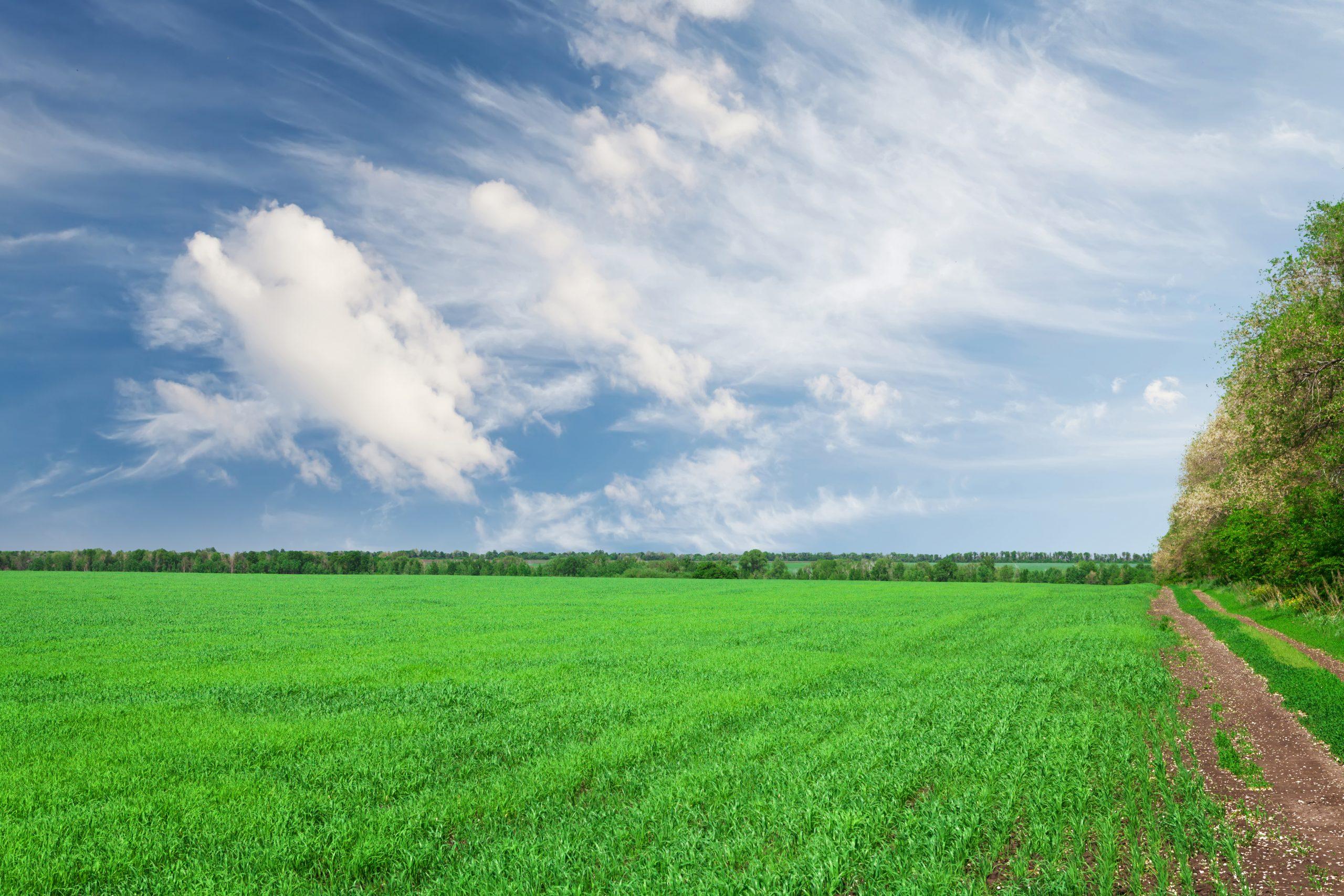 Аудіоролик стосовно земельної реформи