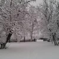 Зимові краєвиди